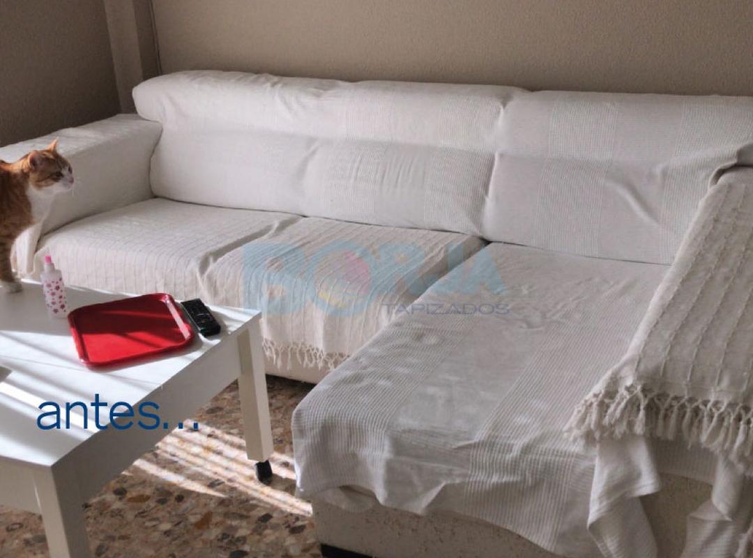 ¿Problemas entre vuestra mascota y el sofá de casa...?